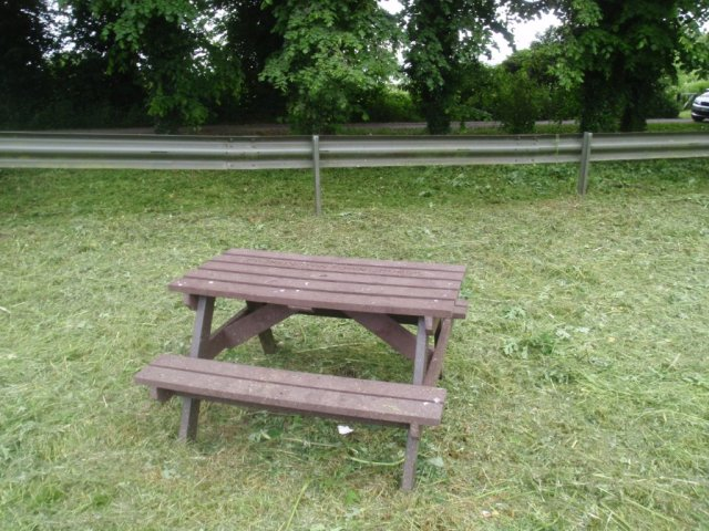 Picnic Table - Grass Cut
