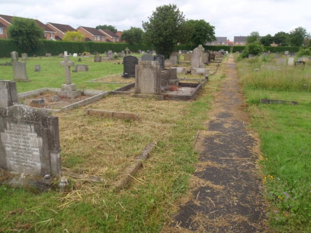 Pock Cemetery Cut