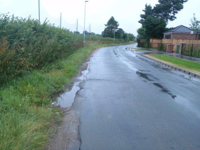 Burnby Lane Verge
