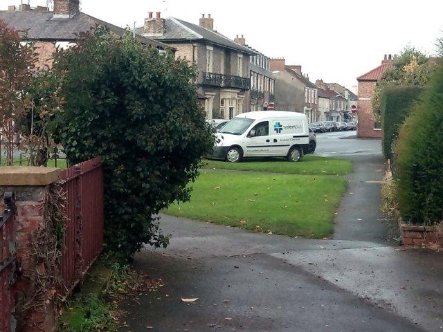 love-lane-hedge-obstruction